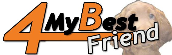 4 My Best Friend